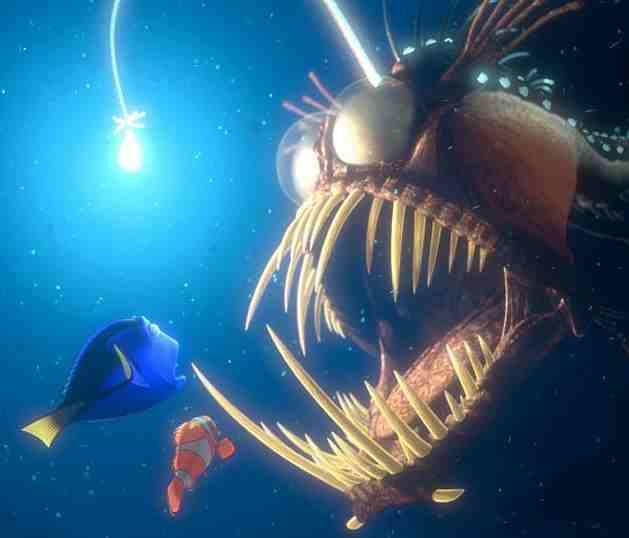 Lady gaga finding nemo dory for What kind of fish is nemo