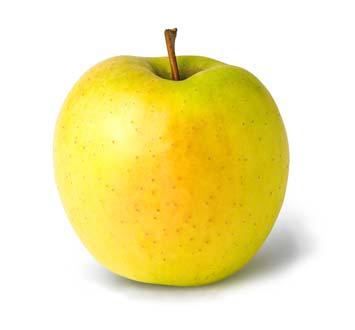 Agree, quiz boob to fruit something